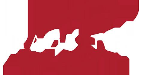 The Brady Team